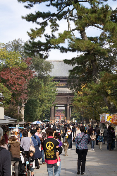 Main gate into Todai-ji, Nara
