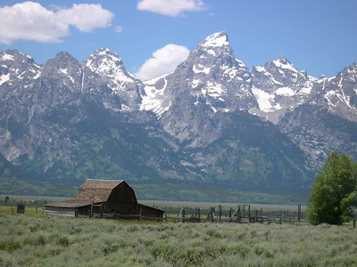 Yellowstone and Grand Tetons 2005