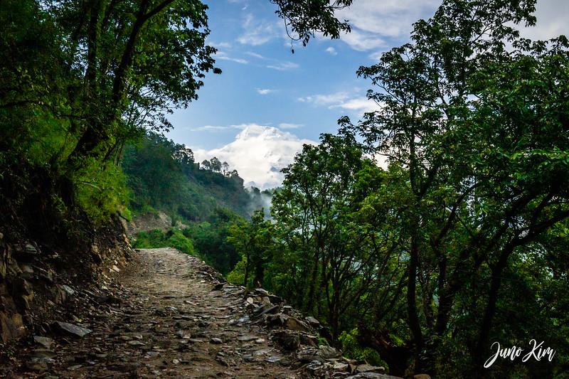 Annapurna__DSC3019-Juno Kim.jpg