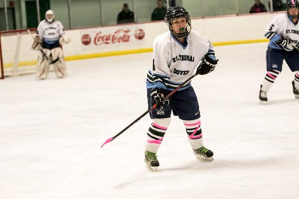 STA_DHS Girls Hockey 011315 Album 1