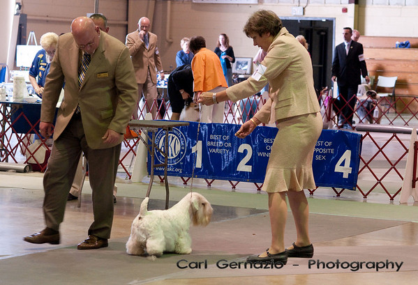 Skyline Kennel Club - June 6, 2009