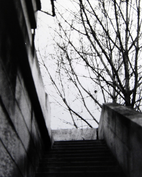 Stairs by the Seine River