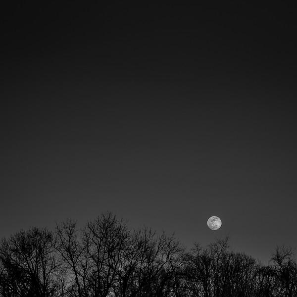 Mike Maney_Sunset Moon-9.jpg