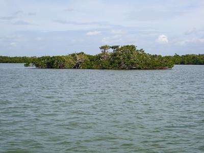 High Points Ancient Island Excursion Boat Tour