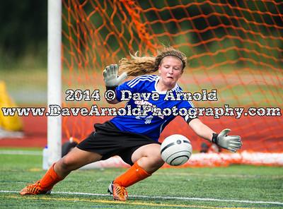9/6/2014 - Girls Varsity Soccer - Somerville vs Newton South