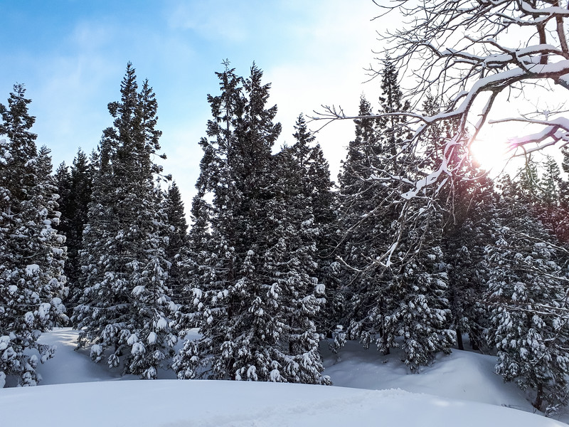 Grade 11 Expedition-Niigata Snow-20190314_073053-2018-19.jpg