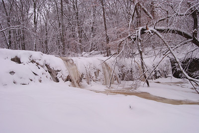 Big Woods 4-4-2014