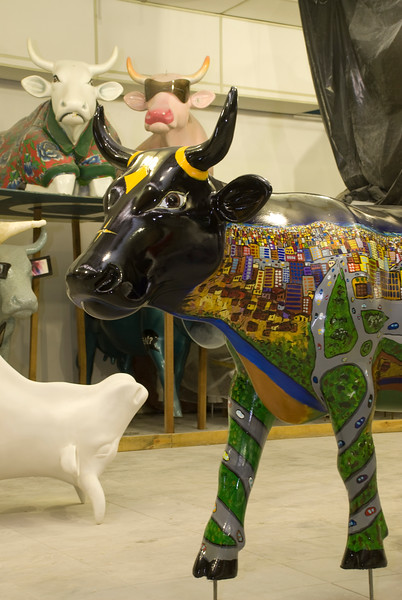 cow113.jpg