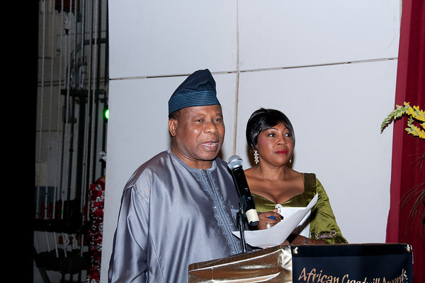2011 African Goodwill Awards