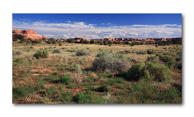 Utah 2008 (Canyonlands NP - Skaw Flats)