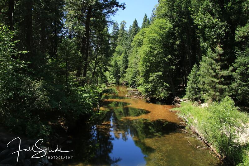 Yosemite 2018 -91.jpg