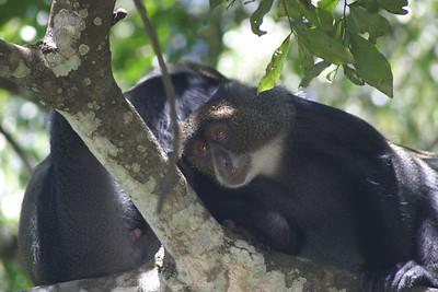 Tanzania December 2005