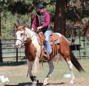 Wy-Not Cowboy Dressage May 2016