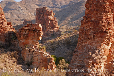 Homer Wilson and Red Rock Canyon