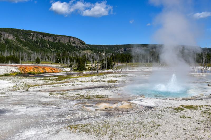 Yellowstone National Park - Black Sand Basin (7-18-20)