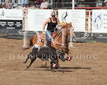 Roping Photos 2015