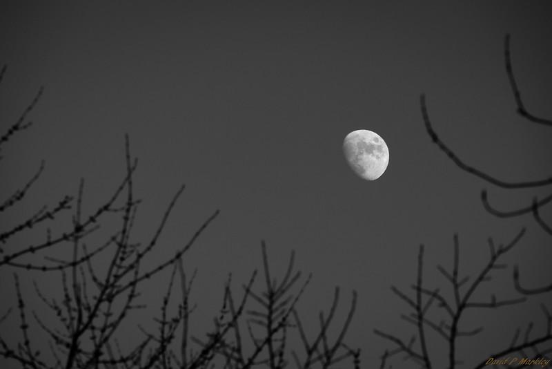 Peak Moon