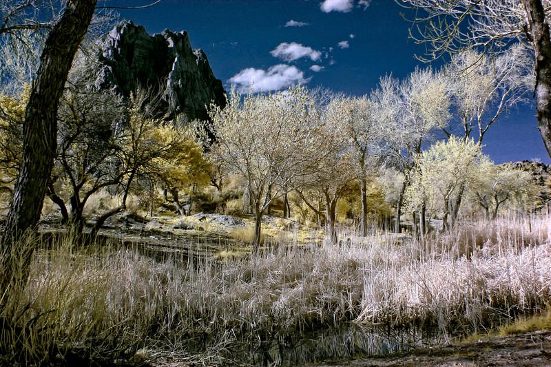 spring mtn ranch-25-Edit-2.jpg