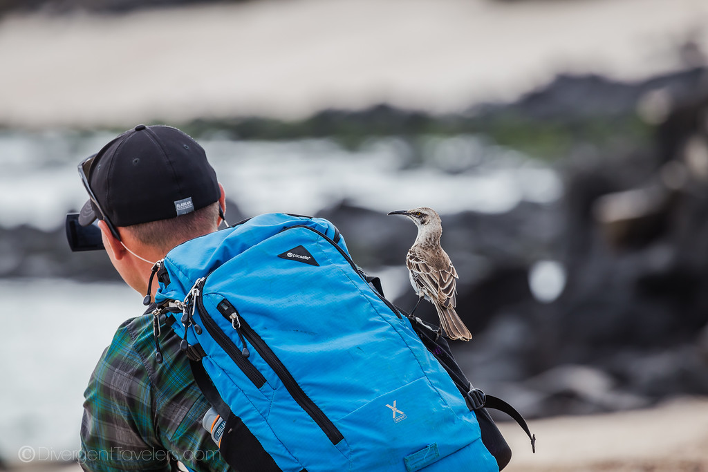 carry on bag in the Galapagos Islands