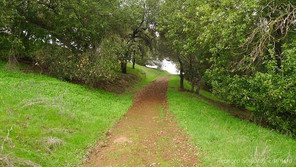 Calero County Park Loop Hike (02.02.13)