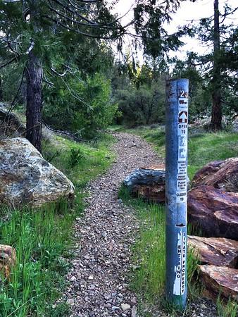 Epic Grouse Ridge MTB Adventure
