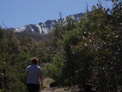 2013-03-17 Four Peaks & Pigeon Springs Trail