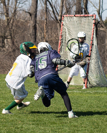 waterford falcons lacrosse
