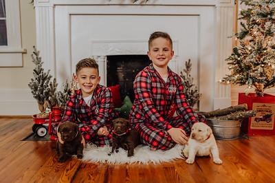 Crook Boys Christmas Mini
