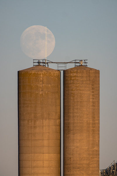 Capper's Hill Moonrise