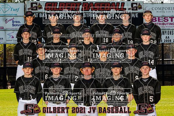 2021 Gilbert JV baseball Team and Individuals