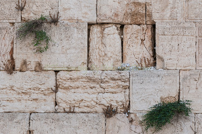 The Kotel - Western Wall - Jerusalem