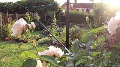 Mum's Garden 2014