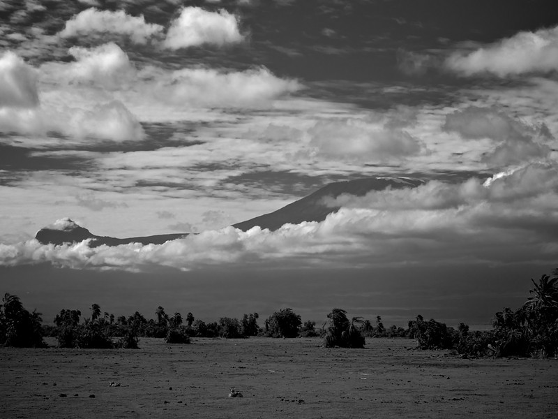 You cannot avoid seeing the Kilimanjaro when in Amboseli, expecting the clouds of the rainy season. Call it luck, but the masais would have preferred a snowcapped and clouded mountain to this clear and snowless view. (Foto: Geir)*
