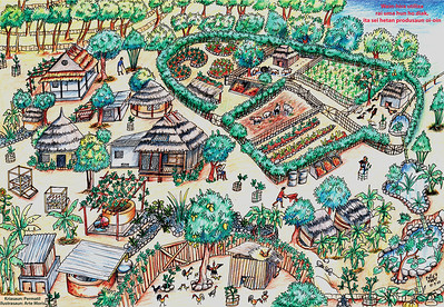 Permaculture – coming soon!