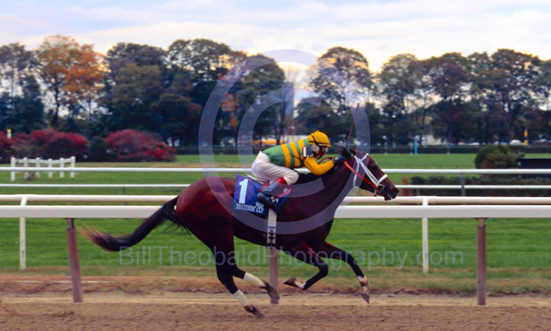 Folklore winning the 2005 Breeders Cup Juvenile Fillies at Belmont Park.