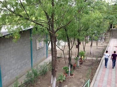 Alauca, Honduras, 2014