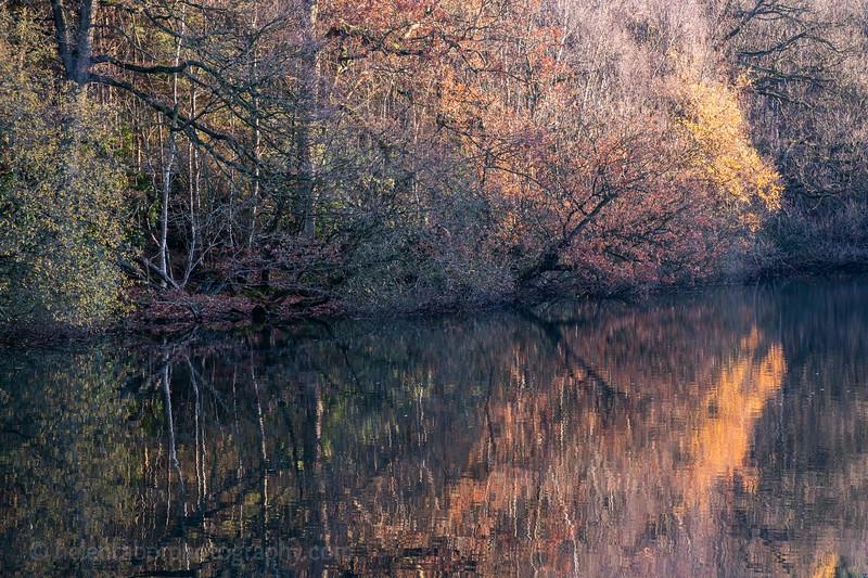 Eavestone Lake-26.jpg