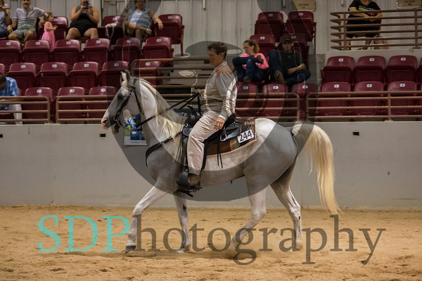 Gaited Classes