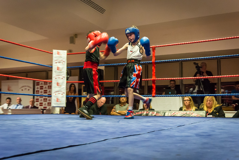 -Boxing Event March 5 2016Boxing Event March 5 2016-11560156.jpg