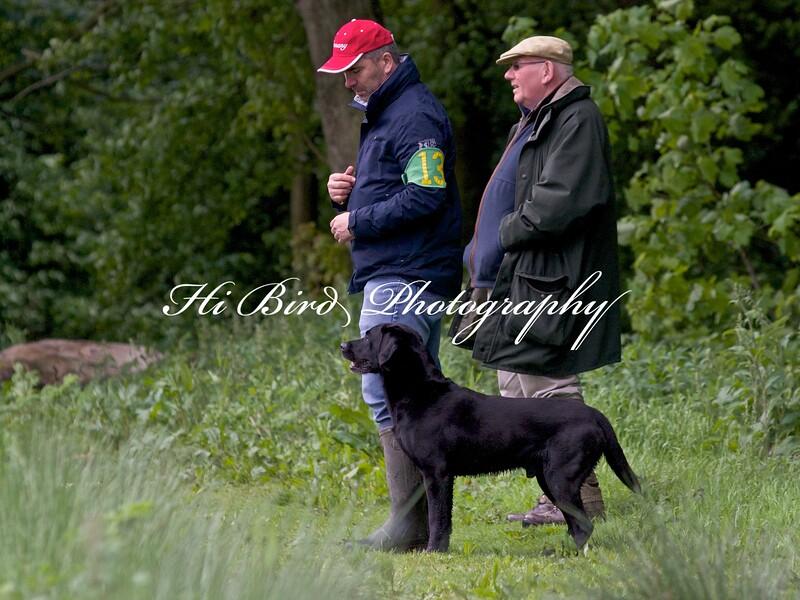 Gunther Kohler and Bill Rostron  3930.jpg