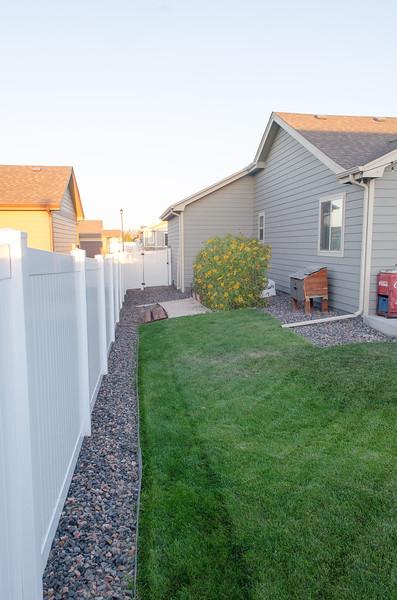 Backyard (4).jpg