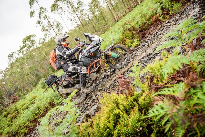 2019 KTM Australia Adventure Rallye (437).jpg