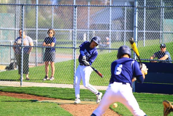 brandon baseball 2015
