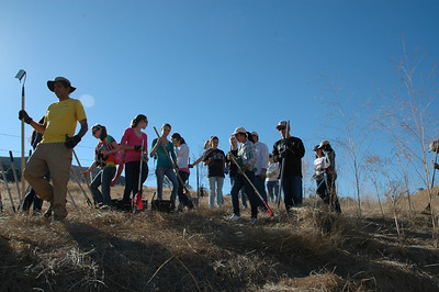 TAPS Volunteers Clear Thatch at Galindo Creek on Mangini Ranch