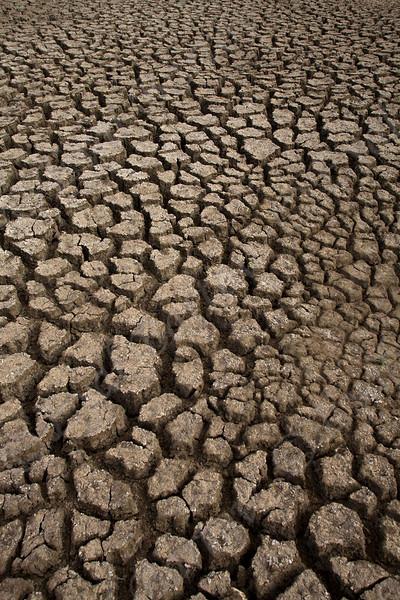 IMG_0332 drought.jpg