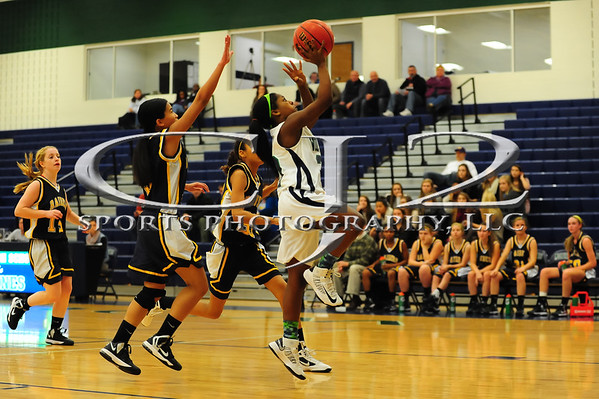 1-4-2013 Loudoun County at Woodgrove Girls Basketball (JV)