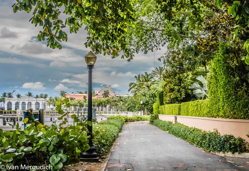 Palm Beach-17.jpg
