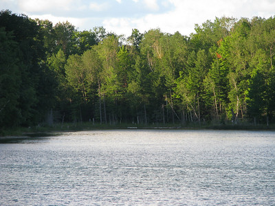 2008 Arbutus Lake