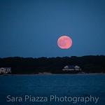 Strawberry Solstice Moon