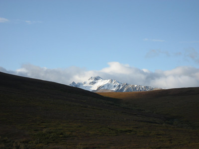 2008 - Sep 4-6 - Denali NP & Mt McKinley Lodge